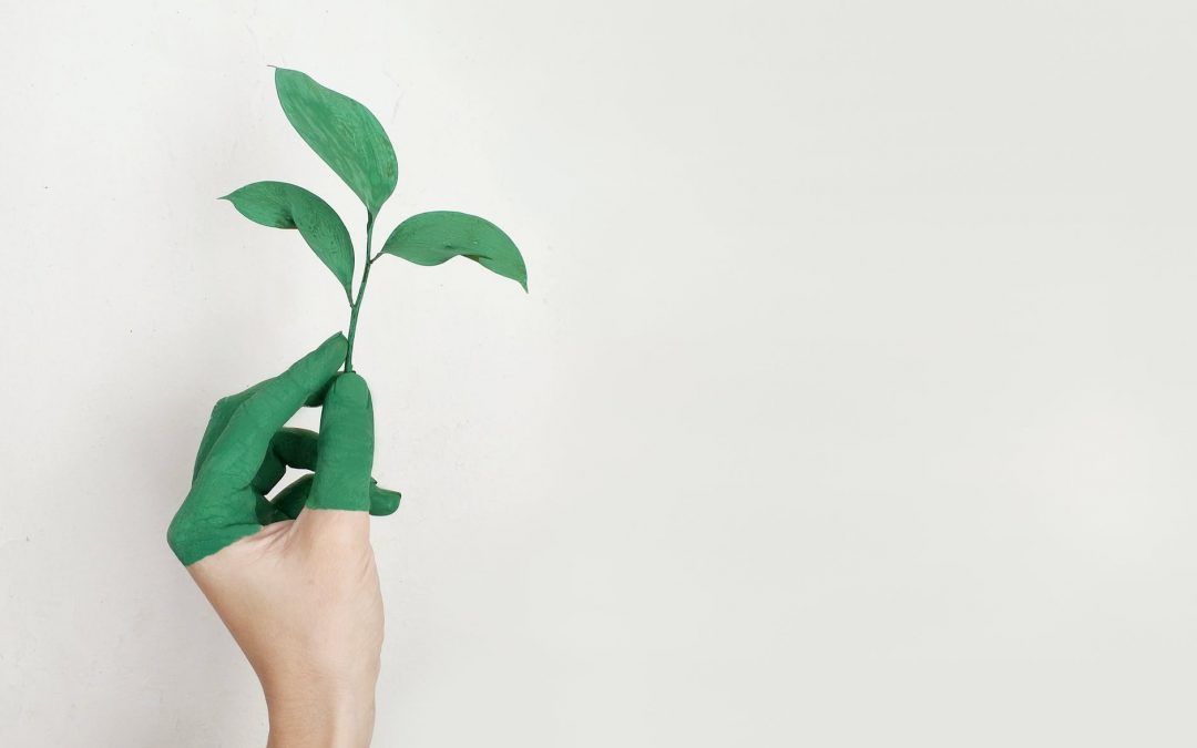 Join our sustainability-focused investor e-pitching event on September 10th